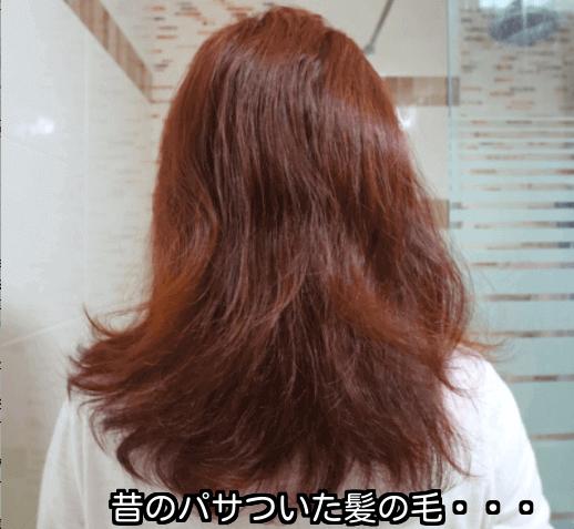 ボサボサの髪の毛